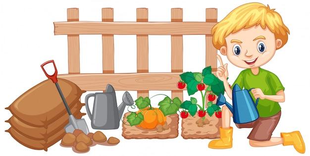 白い背景の上の庭で野菜に水をまく少年