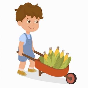 Boy with wheel barrow full of corn