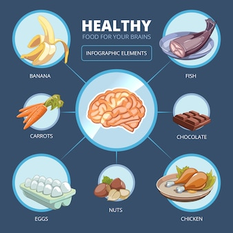 脳の食べ物のベクトルのインフォグラフィック。肉とビタミン、心のエネルギー、バナナとニンジン、鶏肉のイラスト