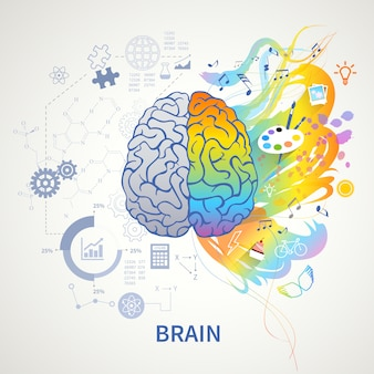 Brain functions concept infographic symbolic depiction with left side logic science mathematics right arts creativity