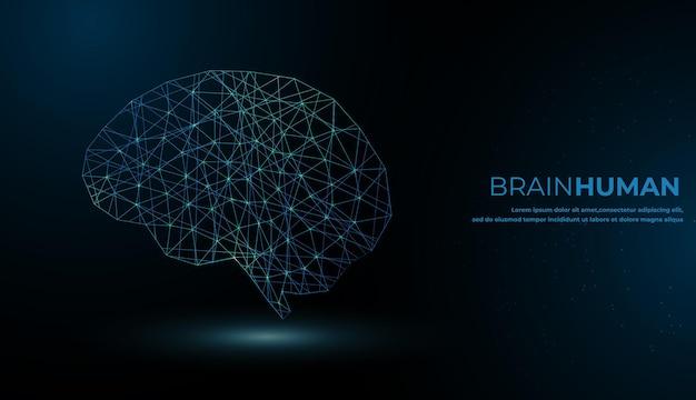 Мозг человека графический цифровой провод точка и линия фон