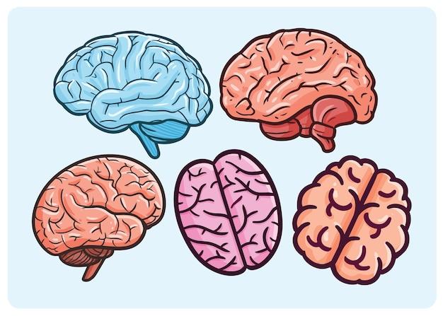 만화 스타일의 다양한 색상이 있는 뇌 그림