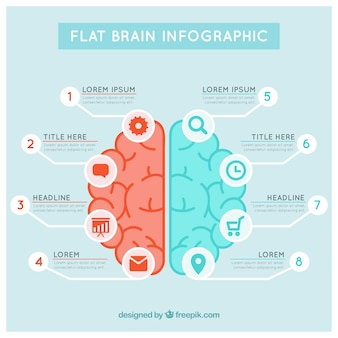 Brain infographic template in blue and red tones