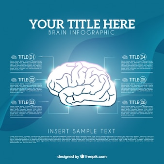 Brain infographic template in realistic style