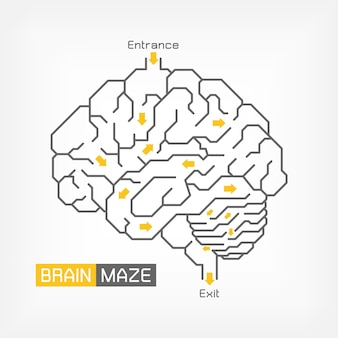 Brain maze. creative idea concept. outline of cerebrum cerebellum and brainstem