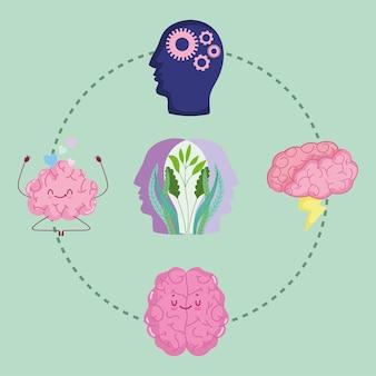 뇌과학 해부학