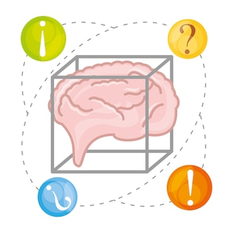 Brain thinking in differents questions