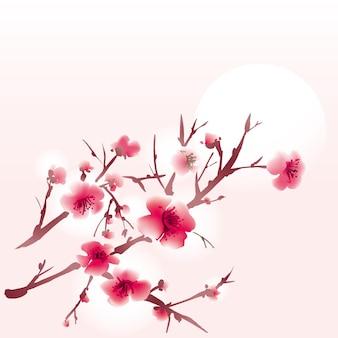 Ветка сакуры цветет
