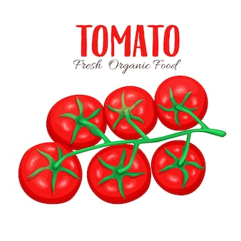 Branch of tomatoes.