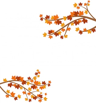 Branch with autumn maple leaves