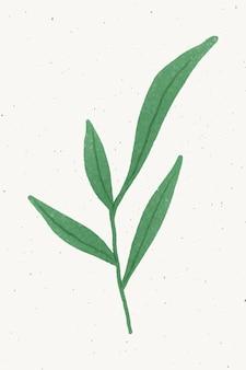 녹색 잎 디자인 요소와 지점