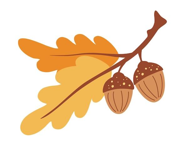 Ветка с листьями и желудями. дуб. осенняя пора. лесной объект. время сбора урожая. f