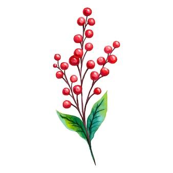 Ветка с красными ягодами и двумя зелеными листьями, нарисованными акварелью.