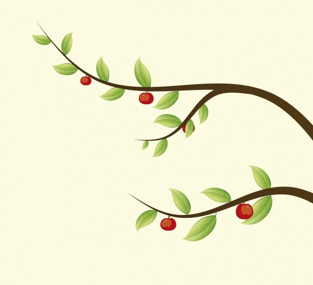 Branches with apples illustration