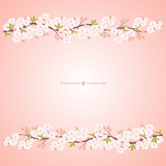 Branches with cherry blossoms