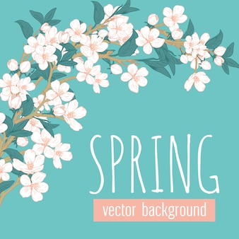 Branches with flowers on blue turquoise background and sample text spring.