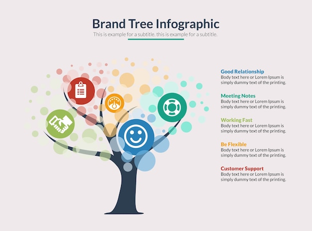 Brand tree infographic vector