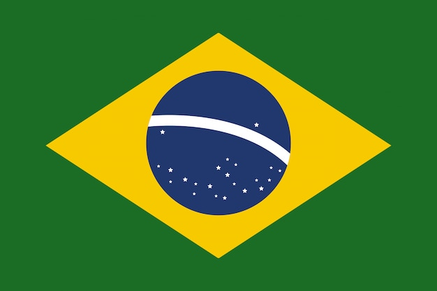 Brasil flag flat vector vector illustration