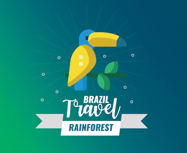 Brazil rainforest and travel logo