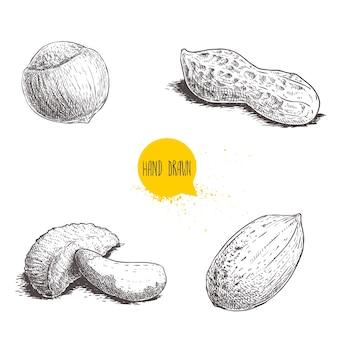 Бразильский орех и скорлупа орехов пекан