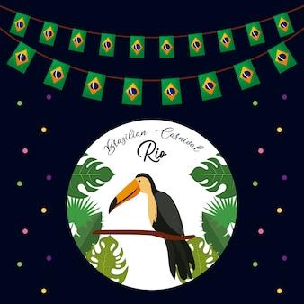 Бразильская тукан традиционная птица