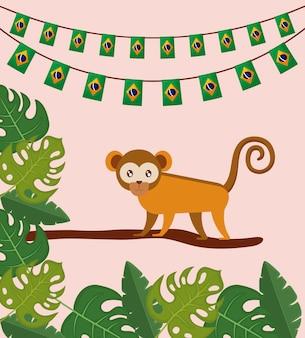 Бразильская традиционная обезьяна