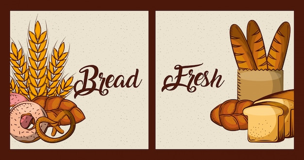 Bread fresh cards bakery food products