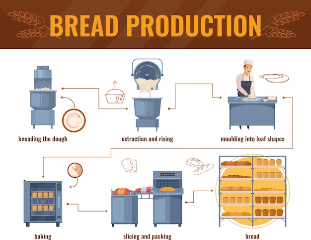 Bread production infographics