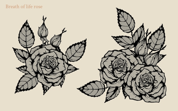 Breath of life rose vector set by hand drawing
