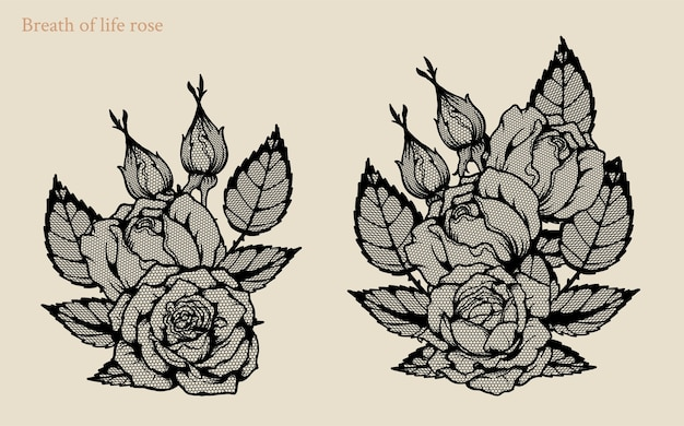 Breath of life rose vector set by hand drawing.