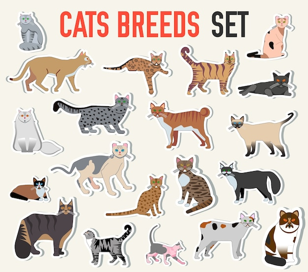 Breed cats icons sticker set