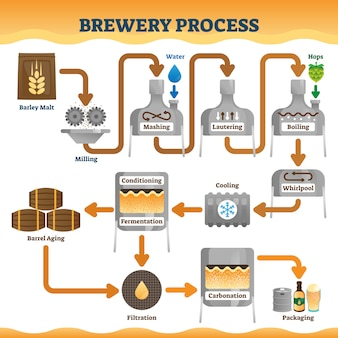 Brewery process illustration