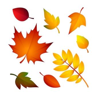 Яркие осенние листья Бесплатные векторы