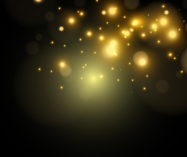 밝고 아름다운 별.