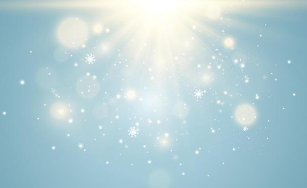 明るく美しい星。