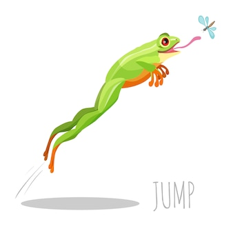 Bright colored frog jumping to catch fly