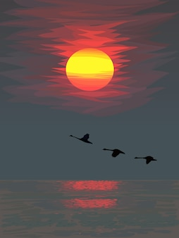 Bright colorful sunset over the sea with silhouettes of flying birds