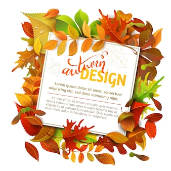 明るい秋の背景。カラフルな秋の白樺、ニレ、オーク、ナナカマド、メープル、栗、アスペンの葉、ドングリ。