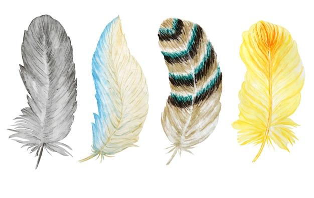 밝은 깃털 설정 수채화 손으로 그린 그림.