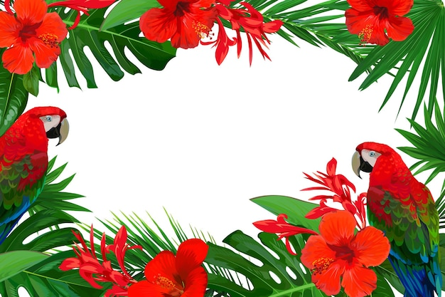 Bright frame with red tropical flowers and palm leaves