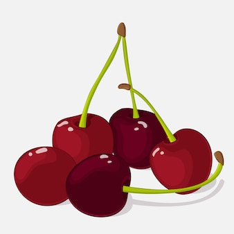Bright juicy cherry on grey background in cartoon style.