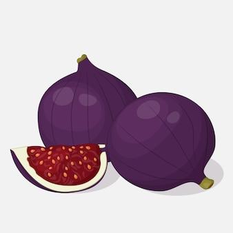 Bright juicy fig