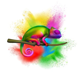 Bright multicolored chameleon on tree branch