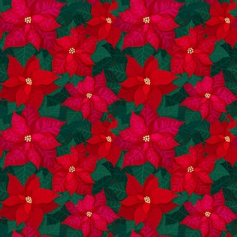 Bright seamless christmas pattern with red poinsettia and green leaves. festive background for textile print wrapping paper and floral tiles. vector illustration