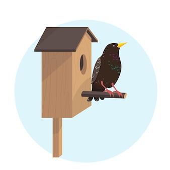 Яркая птица скворца на скворечнике