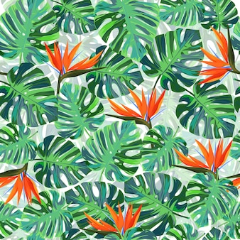Bright tropical background with strelizia flowers