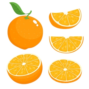 Яркий векторный набор красочной половины, ломтика и сегмента сочного апельсина. апельсины свежие мультфильм на белом фоне.