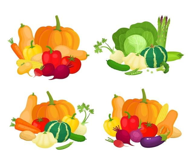 다채로운 노란색 오렌지 붉은 야채의 밝은 벡터 세트 신선한 만화 유기농 야채