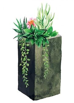 콘크리트 수직 냄비에 밝은 수채화 다육 식물, 손으로 그린