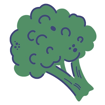 Broccoli. hand draw fresh healthy vegetable food. cartoon vector illustration isolated on a white background.